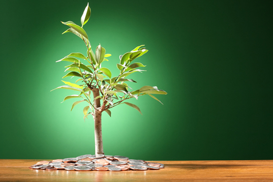 Seed Funding: The VC Option
